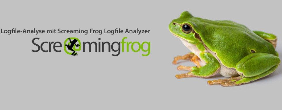 screamingfrog top digital marketing tool